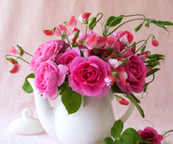 Dark Pink Roses in a Teapot