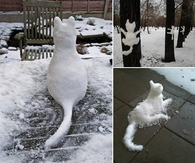 Cute Snow Cats