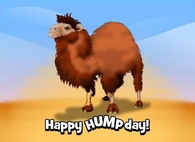 Happy Humpday