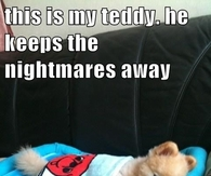 Dog and teddy