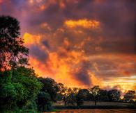 Orange clouds on the horizon