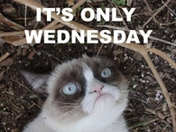 Its only Wednesday