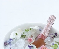 Champagne on Frozen Flower Ice Cubes