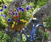 Bright & Cheery Flower Basket on Bicycle