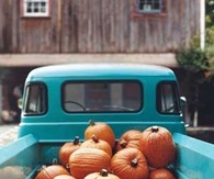 Pumpkins in a truck