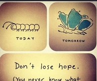 Dont Lose Hope