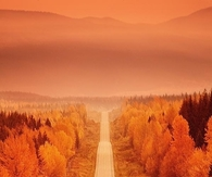 Orange Autumn haze