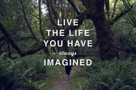 Live the life you have always imagined