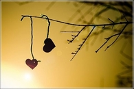 2 Hearts on a Tree Branch
