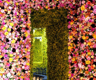 Flower Doorway
