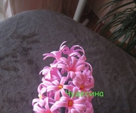 DIY Hyacinth Flower