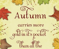Autumn carries more gold in it's pocket than all the other seasons