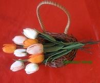DIY Tulips
