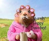 Morning Happy Tuesday