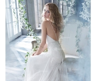 Elegant Backless Sheath/Column With Lace Bodice And Tulle Skirt Wedding Dress