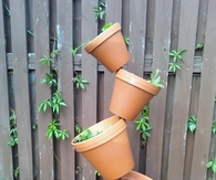 Tipsy Tower Herb Garden