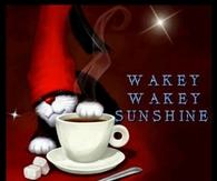 wakey wakey sunshine