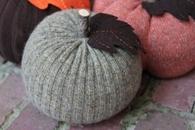 Pumpkin Cozy's