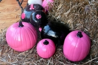 Painted Pink & Black Pumpkins
