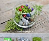 DIY Small Evergreen