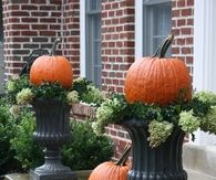 Pumpkin Topiaries