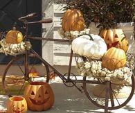 Antique bike and pumpkin decor