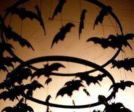 Dangling Bats