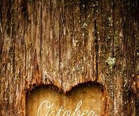 October love