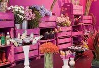 Pink Garden Room