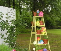 Cute Painted Ladder with Plants & Birdhouses
