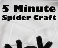 Bead spider craft