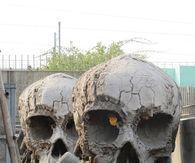 Skull Props