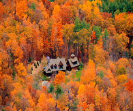 House in the Middle of Fall Trees