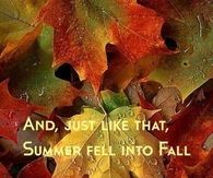 Summer fell into Fall