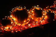 Light decorated pumpkins