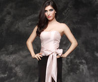 Lovely Strapless Evening Gown