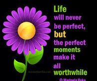 Life will never be perfect, but the perfect moments make it worthwhile