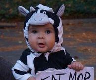 Eat More Chicken Babies Halloween Costume