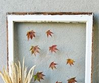 Old Window with Leaves Brings the Outside In