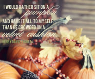 I would rather sit on a pumpkin and have it to myself....