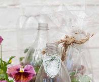 Soda bottle terrarium