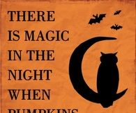 When pumpkins glow by moonlight