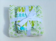 Baby blanket and bib cloths set