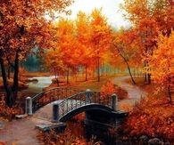 Beautiful Autumn Painting