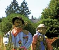 Scarecrows for the Garden