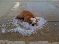 cooling off