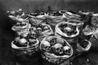 Bags of skulls