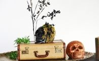 DIY Halloween Chic Skulls