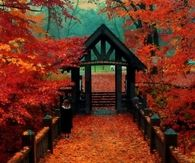 Autumn in Wisconsin Park