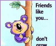 Friends like you don't grow on trees!